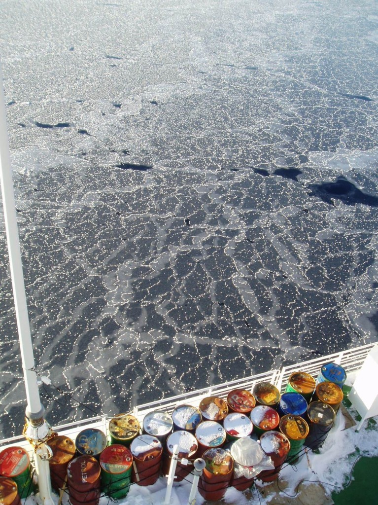"""Om det är vindstilla och lugnt när isen fryser så blir det inga """"pannkakor"""" utan så kallad """"nilas"""": tunn is som ser nästan svart ut då man ser det mörka havet under. De tunna isflaken glider lätt över och under varandra."""